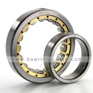 Cylindrical Roller Bearings 1